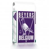 00029607-001-000_tube_3dplus30-beyers-25-kg-links-100