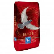 beyers-778-elite-enzymix-sport-diet-20kg